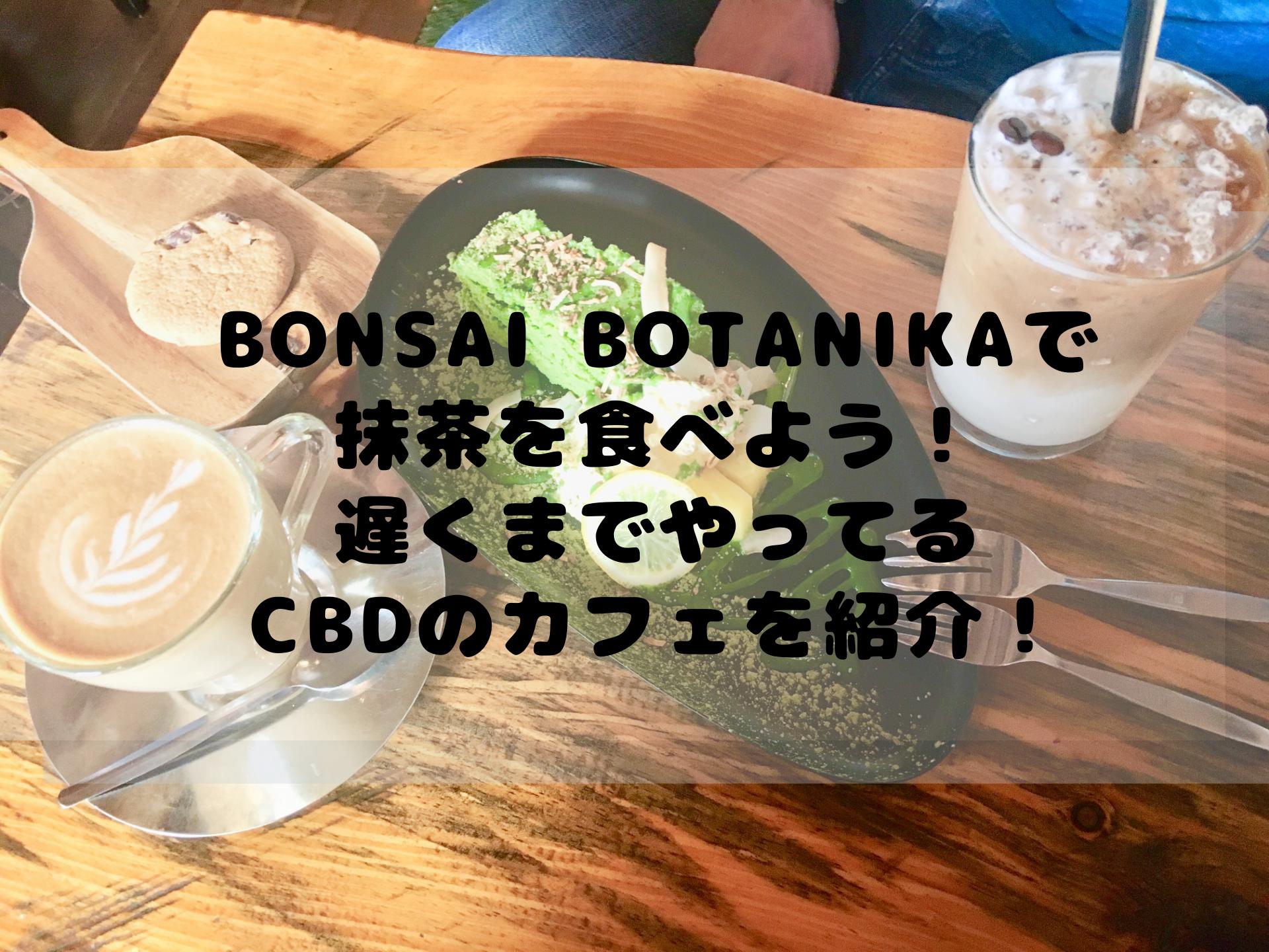 Bonsai Botanikaで 抹茶を食べよう! 遅くまでやってる CBDのカフェを紹介!